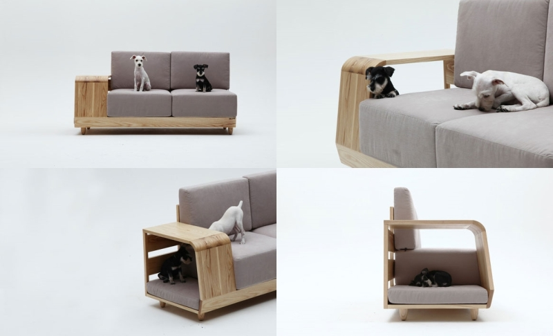 11 Sofa-canino-bem-legaus-5-tile